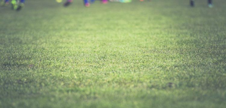 Fußball Feld Freistadt